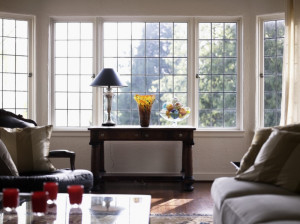 Energy Efficient Windows Countryside IL
