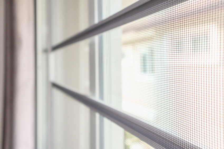 Buzz Off! 4 Ways to Keep Bugs Away From Your Windows